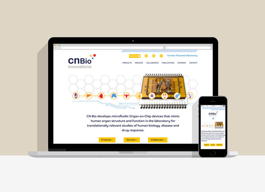 responsive website design designs like these
